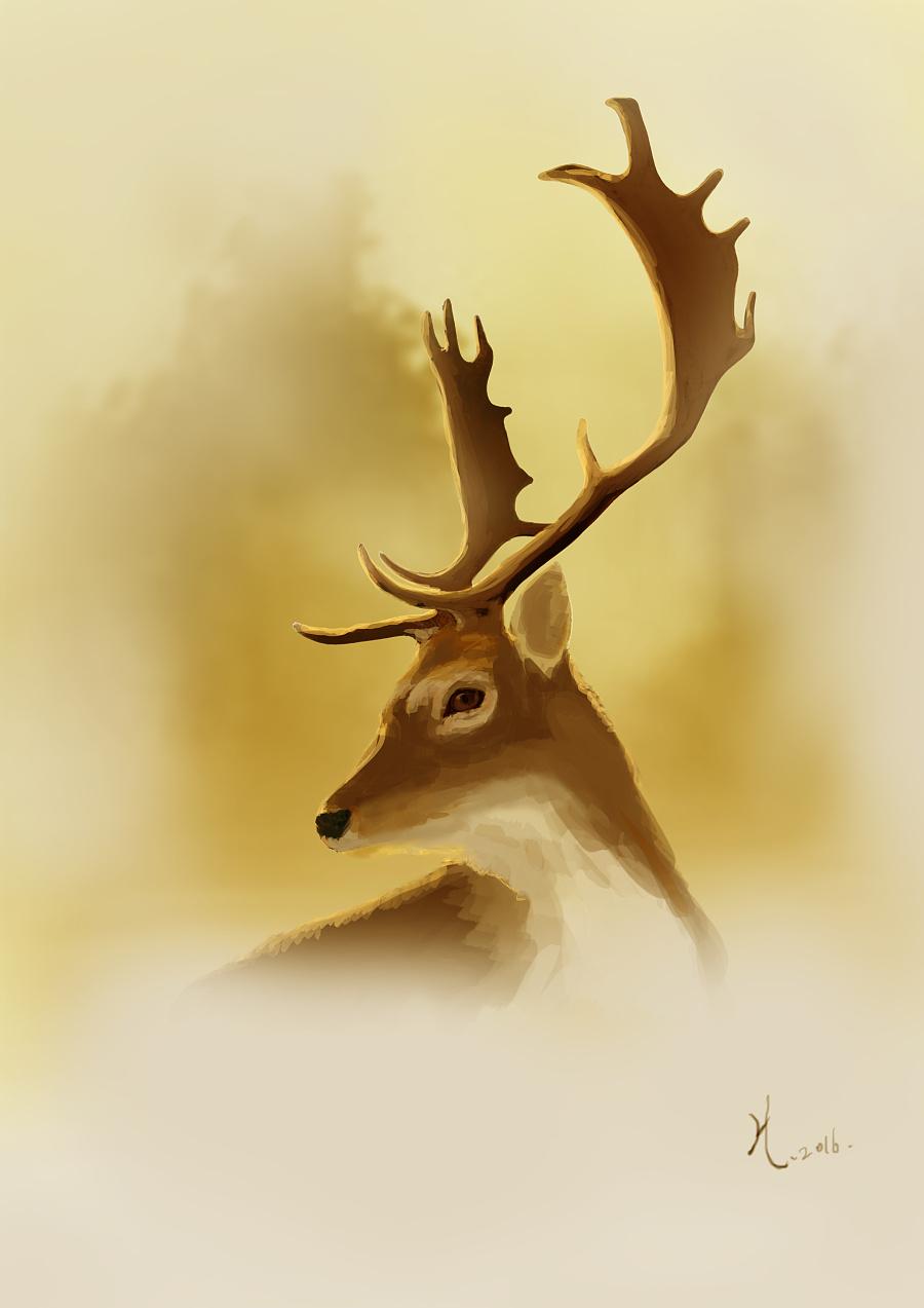 麋鹿星辰手机壁纸