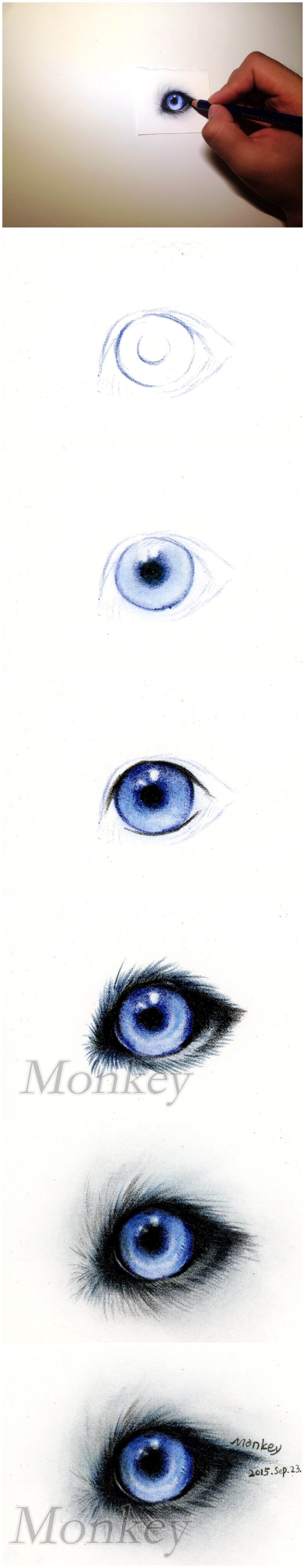 哈士奇眼睛教程|纯艺术|彩铅|王俊宇monkey - 原创