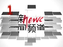 CCTV新闻频道 200510秒ID2