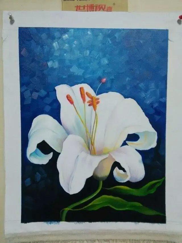 油画花卉|绘画习作|插画|画心0