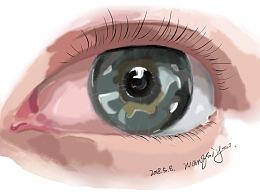 【 你是我的眼 】