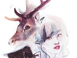 遇见鹿,看见你,成为你。| 高手之鹿