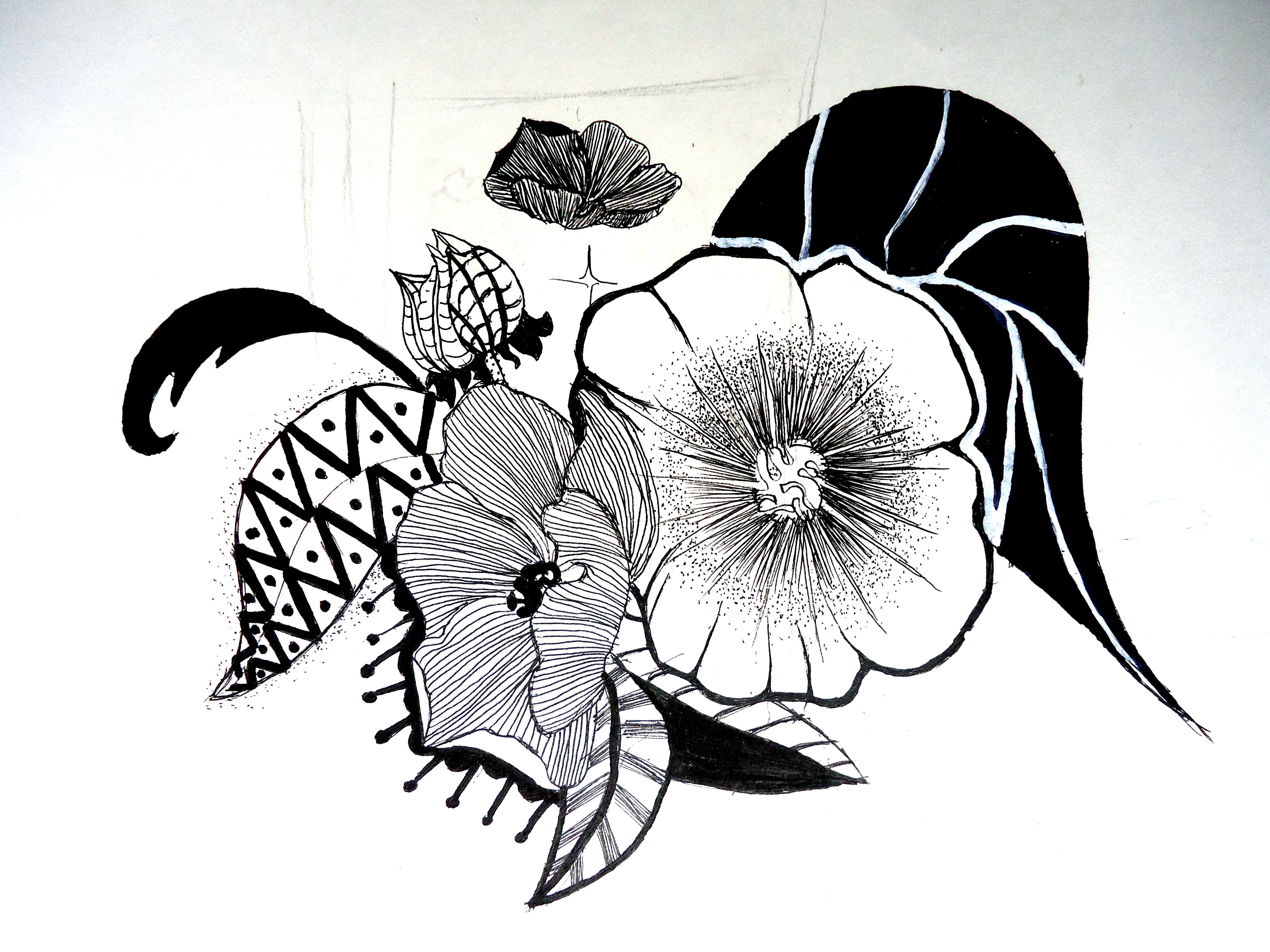 简笔画 设计 矢量 矢量图 手绘 素材 线稿 4320_3240