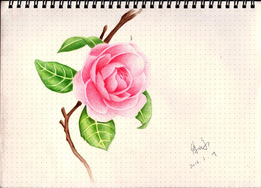 手绘 素描 彩铅