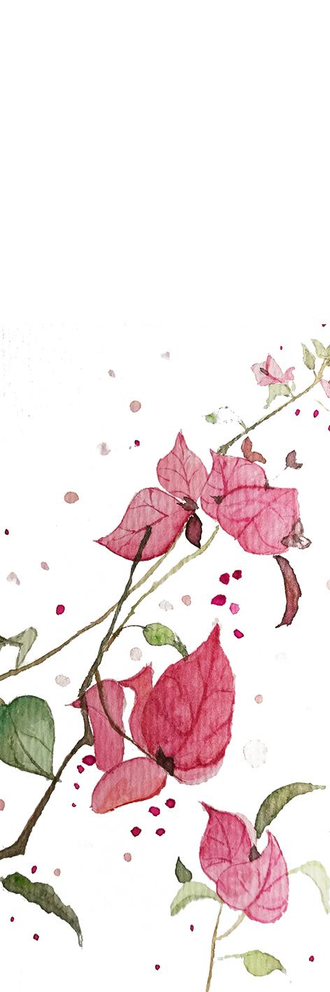 花朵临摹 书签|绘画习作|插画|silvermoon