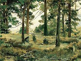 我的一幅风景油画习作《小树林》