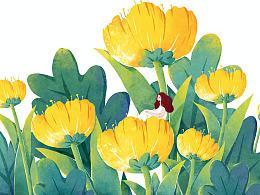 春天的花花草草