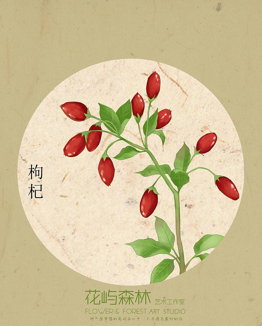 小清新 复古风 植物 包装插画设计