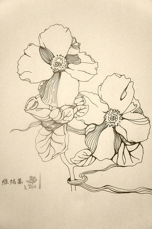 插画黑白手绘简约