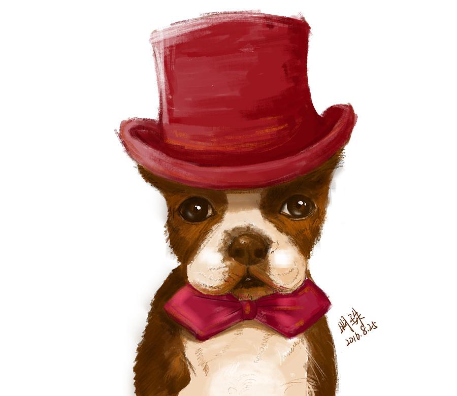戴帽子的狗先生|绘画习作|插画|明月之珠 - 原创
