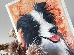 狗头大的绘画过程
