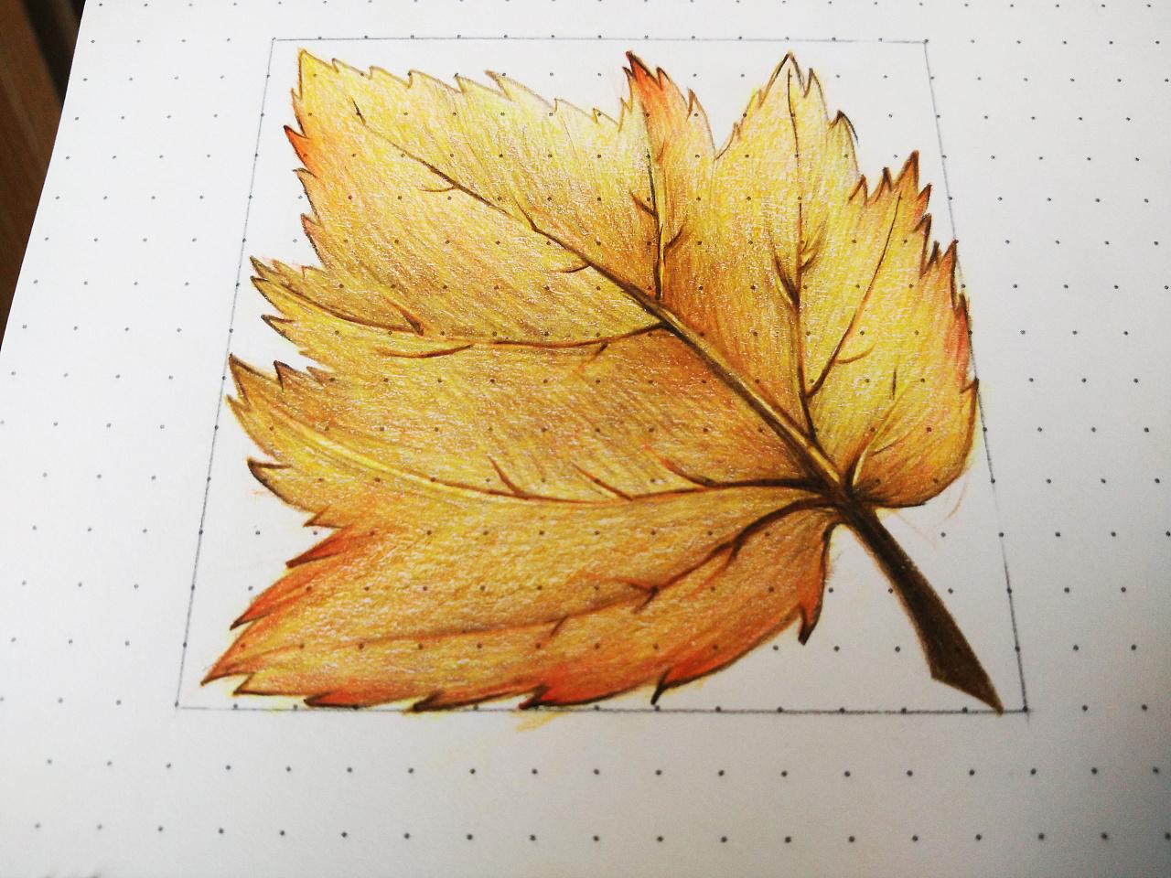 彩铅笔手绘原创练习-01