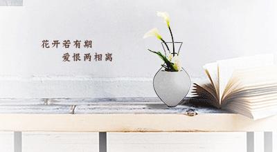 中国风 花盆设计