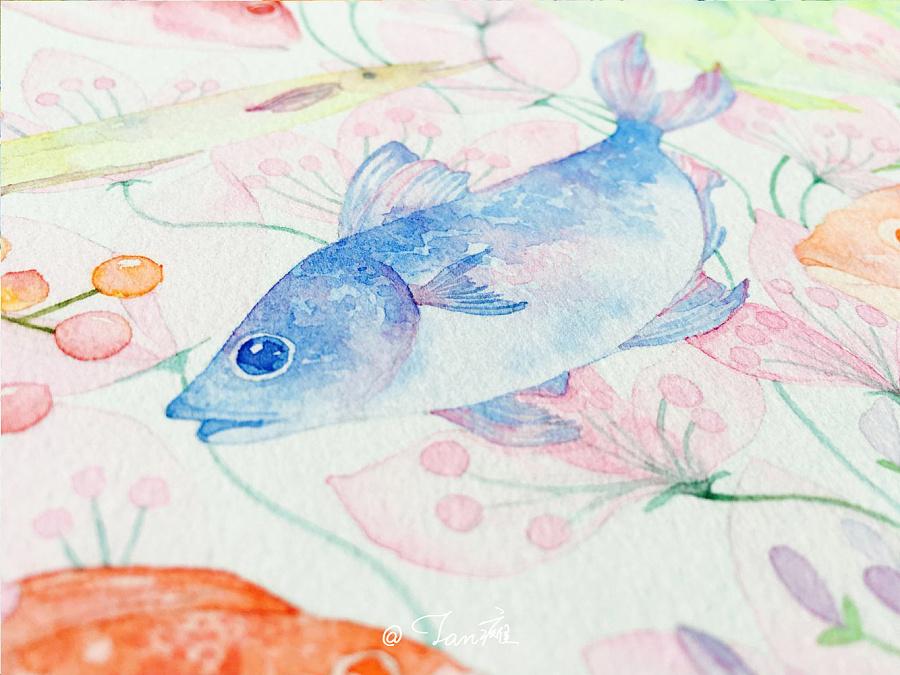 《鱼》水彩手绘插画|商业插画|插画|tan瘫大仙儿