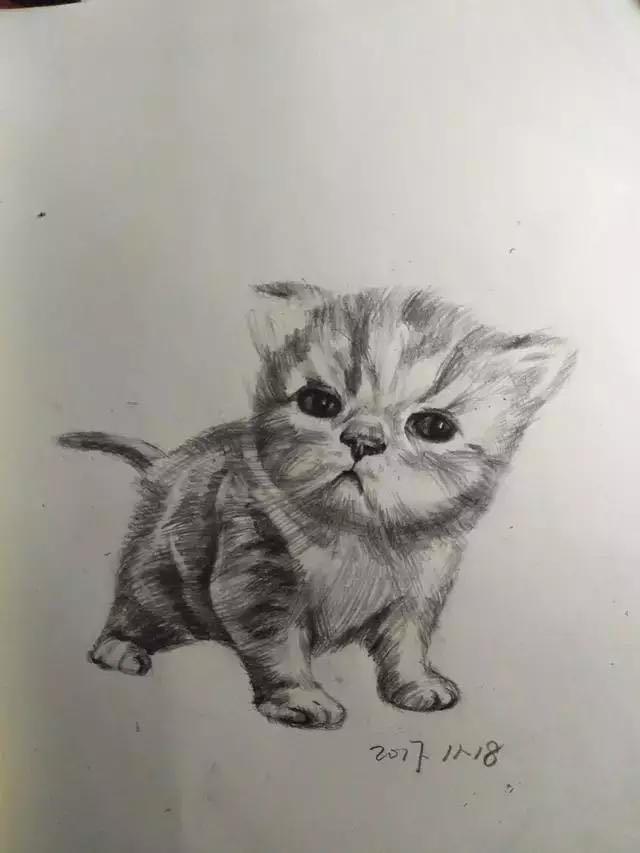 小小手绘图
