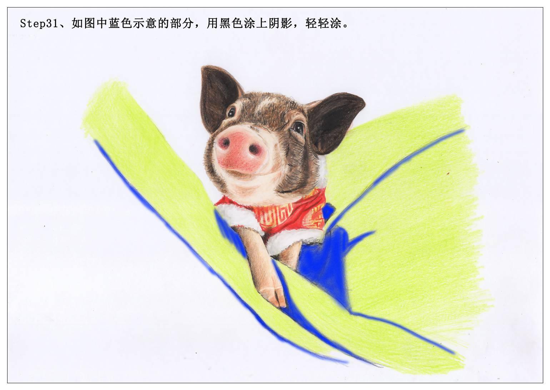 【驴大萌彩铅教程211】手绘小香猪 猪年大吉