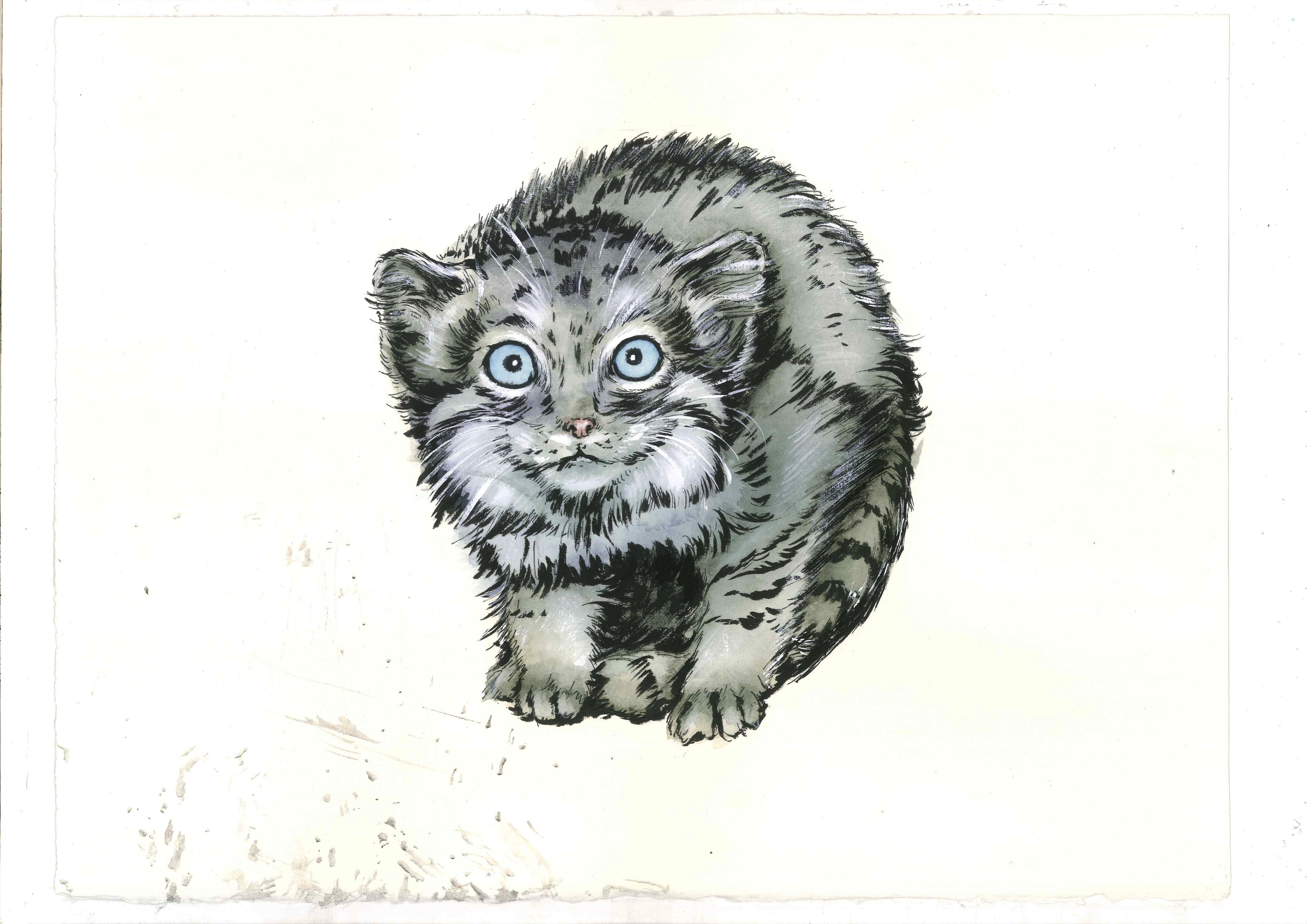 水彩动物和佛|插画|商业插画|视觉总参labv - 原创