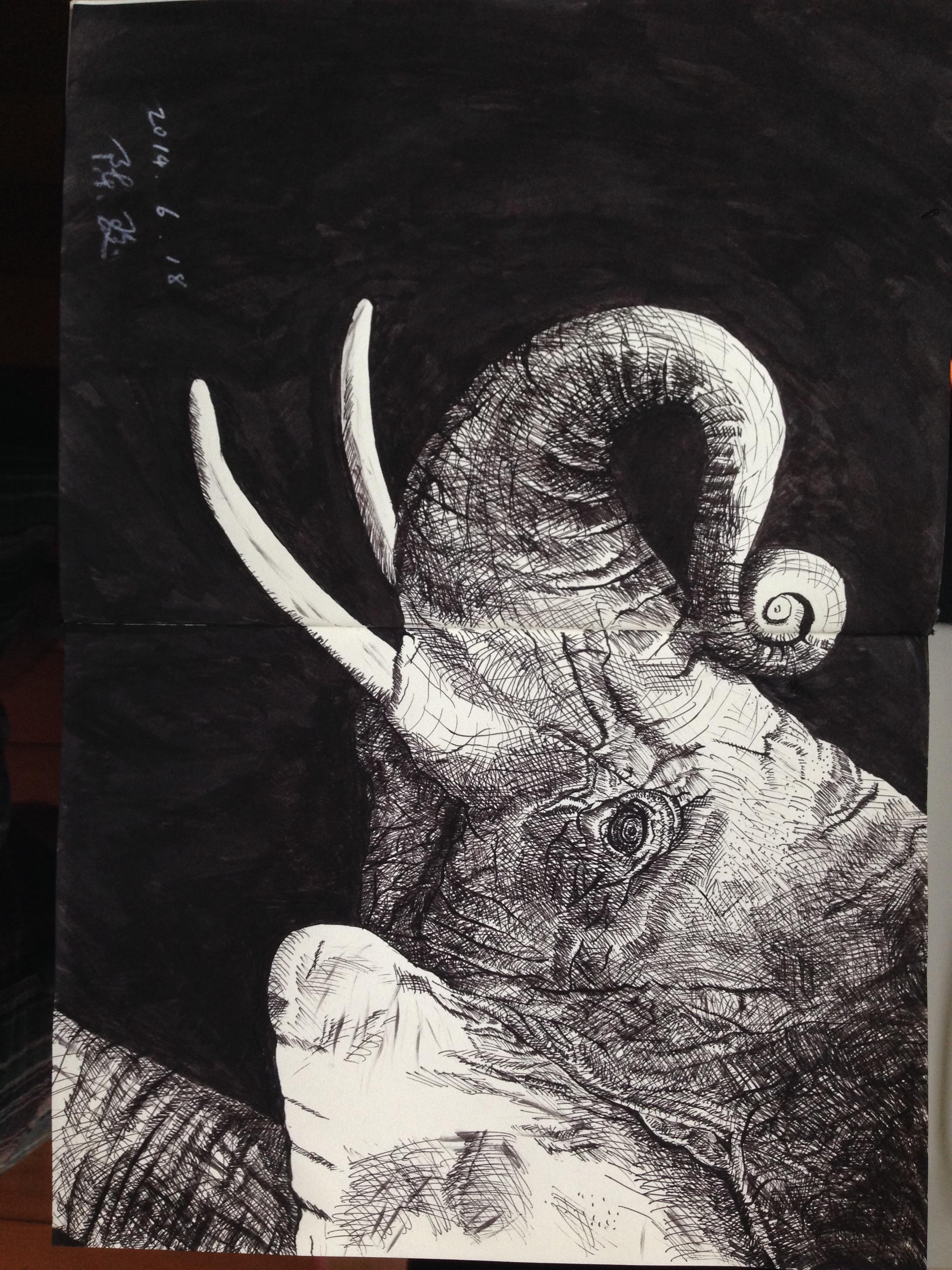 一头卷鼻子的大象