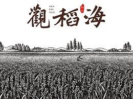 华稀大米插画设计