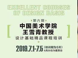 """2019年中国美术学院王雪青""""设计基础精品课程""""培训"""