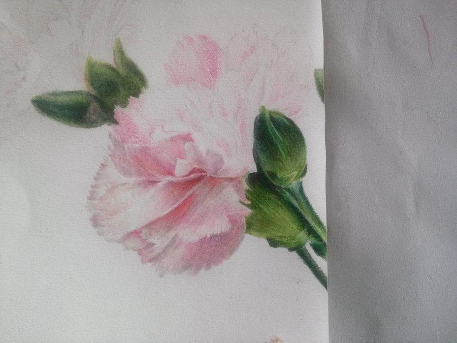 彩铅画木头纹理