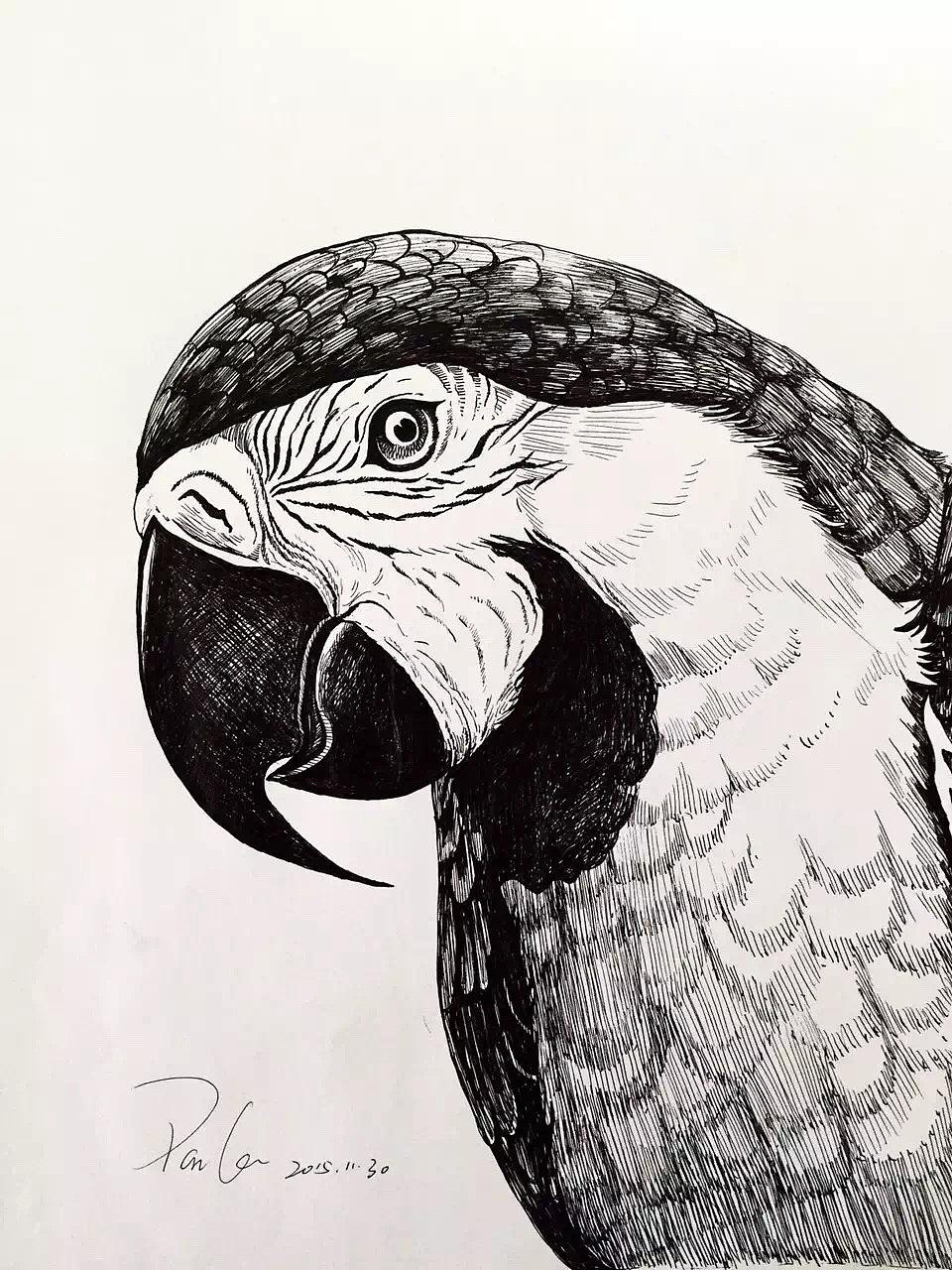 我的黑白画