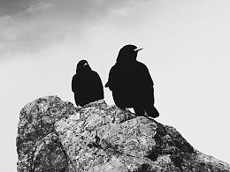 手机摄影 | 黑白日常