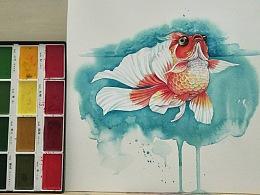 治愈系水彩画,金鱼绘画教程视频