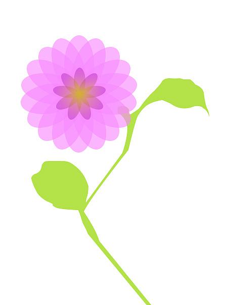 一朵紫色的小花