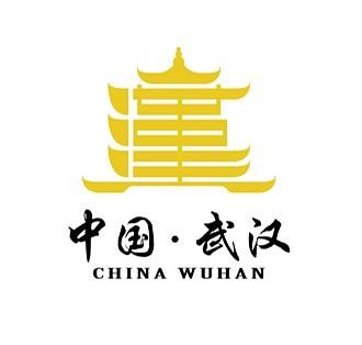 武汉 /strong>城市logo设计方案图片