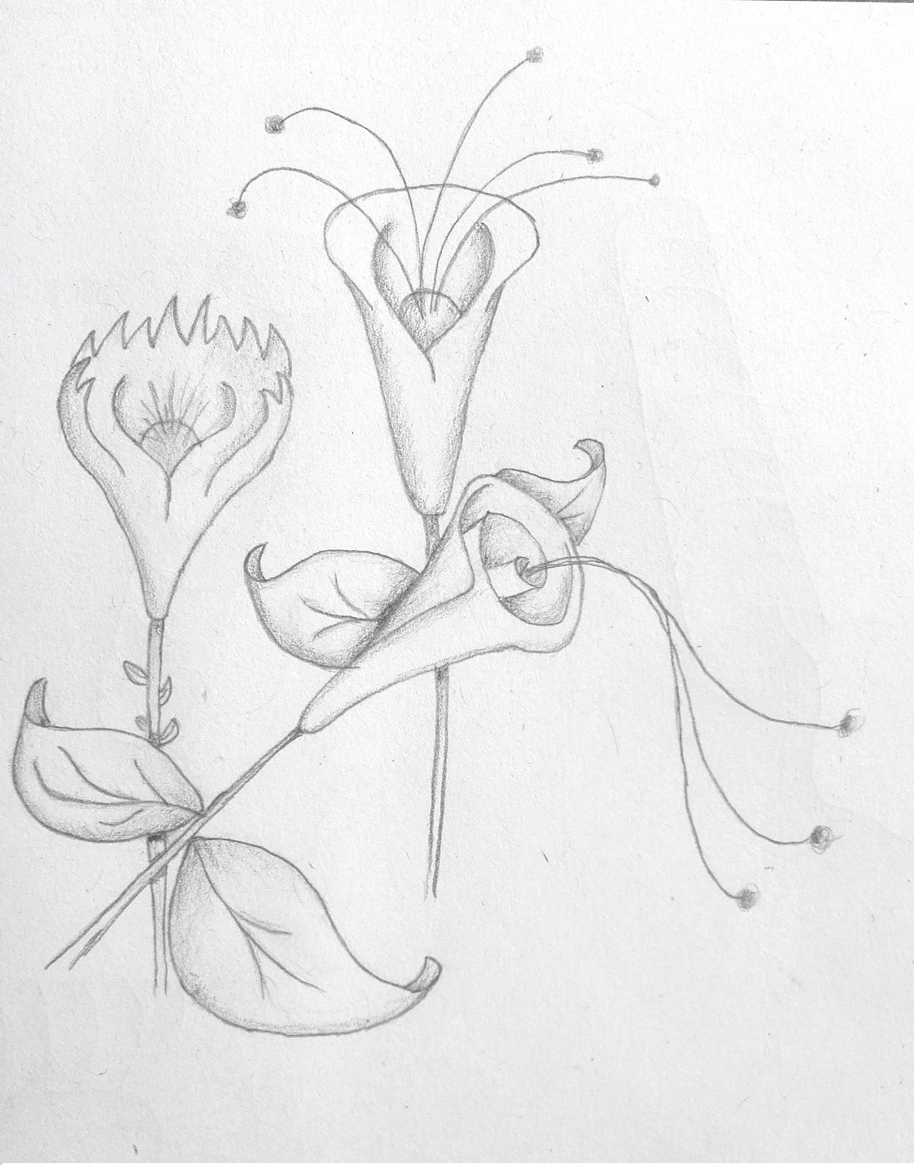 手绘作品|插画|插画习作|我是奋斗的小鱼 - 原创作品