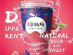 酸甜工坊   整案品牌形象设计