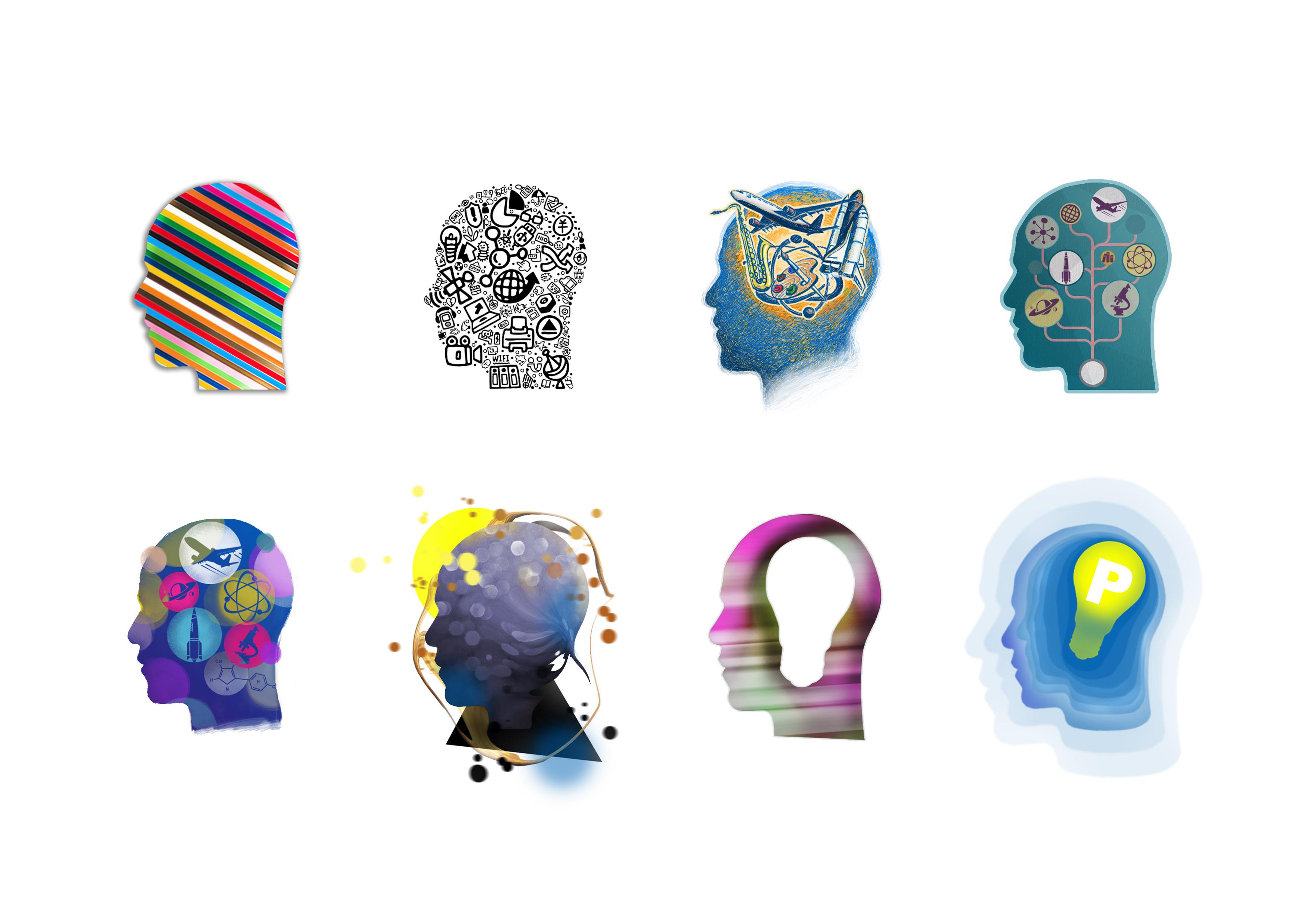 脑袋后面结构图