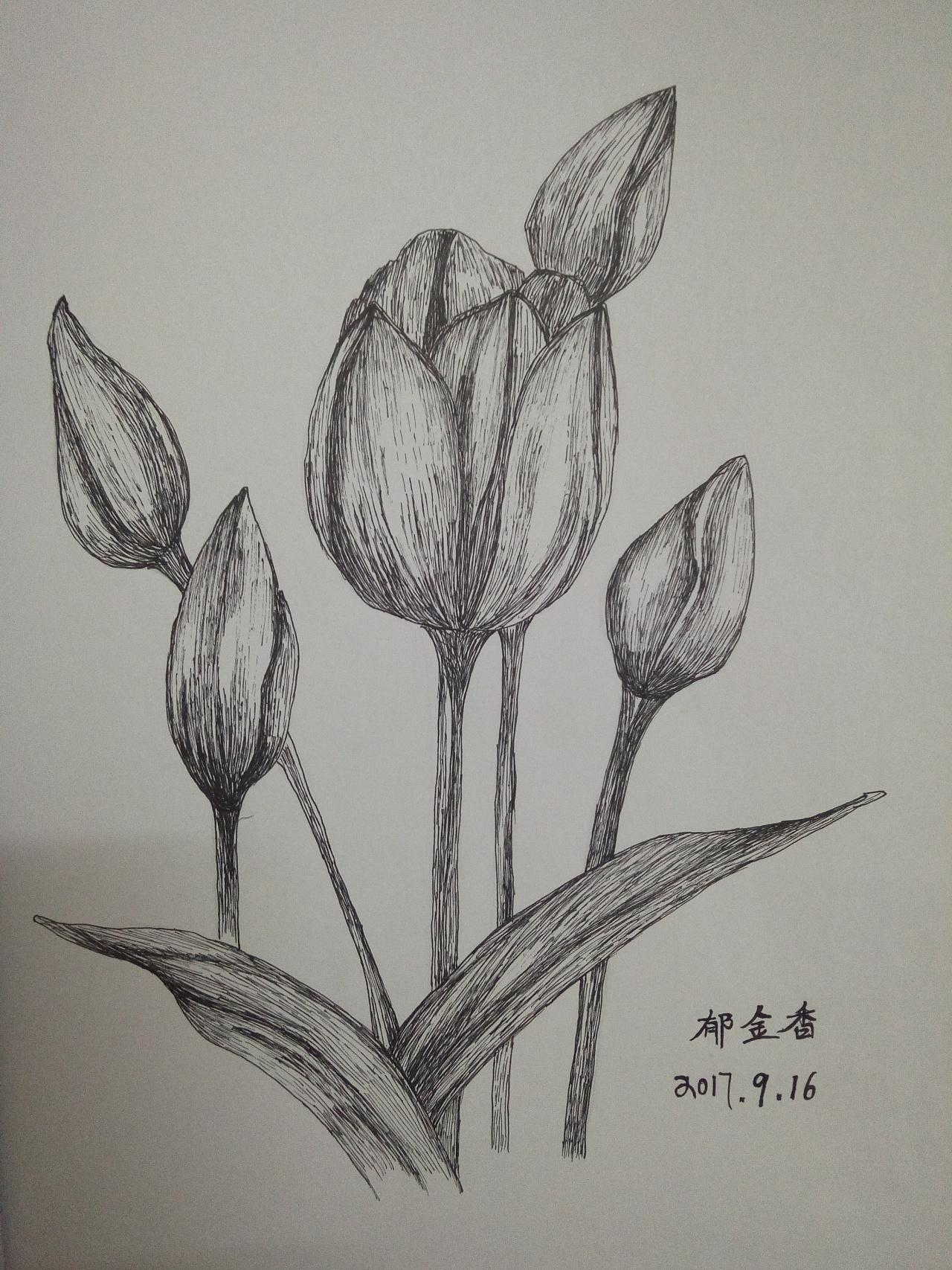 黑白画意图片
