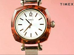 美国TIMEX/天美时手表【三目摄影作品】