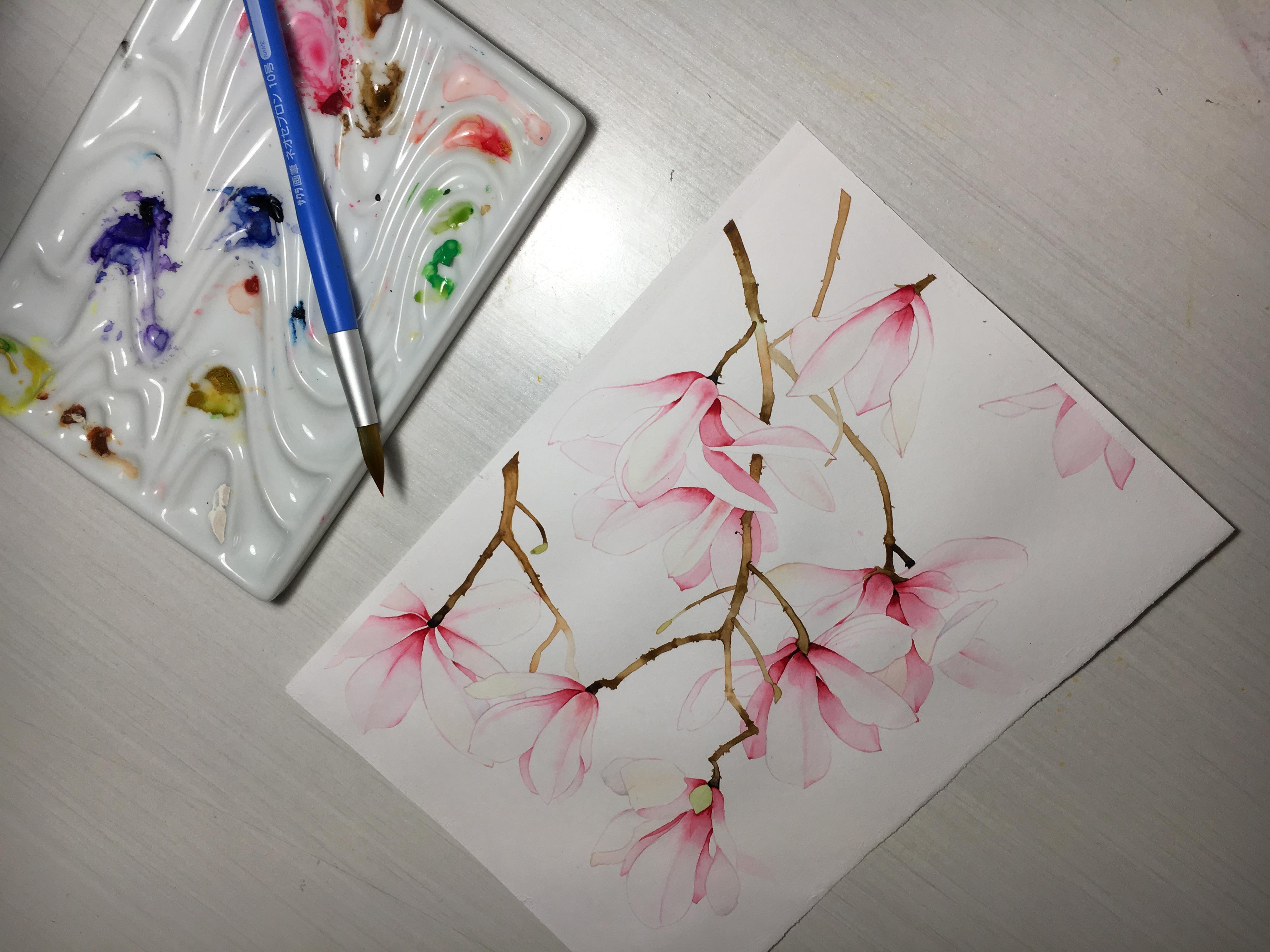 玉兰花水彩手绘|插画|插画习作|天空安静 - 原创作品
