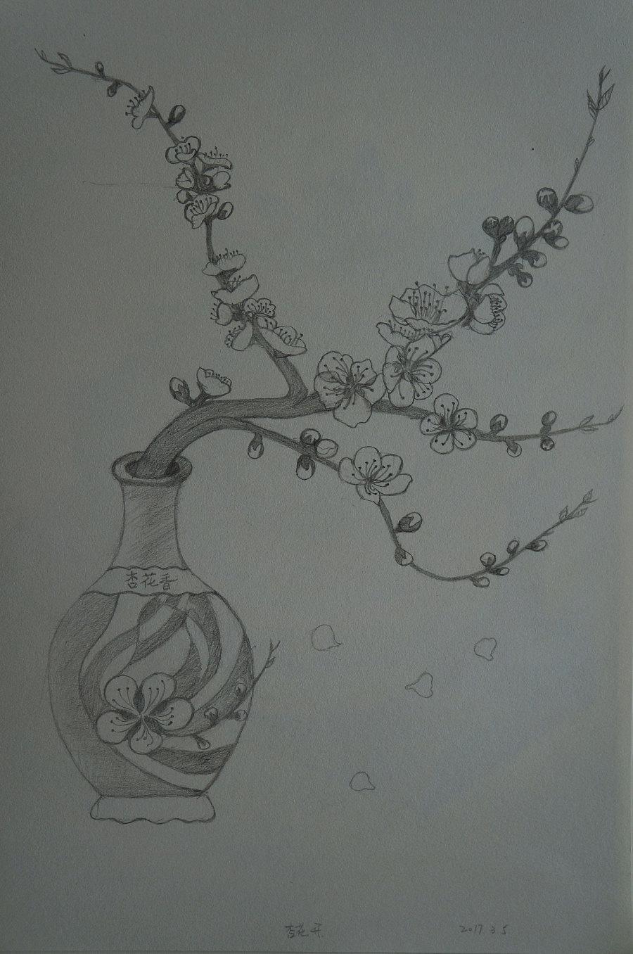 杏花手绘图片大全大图
