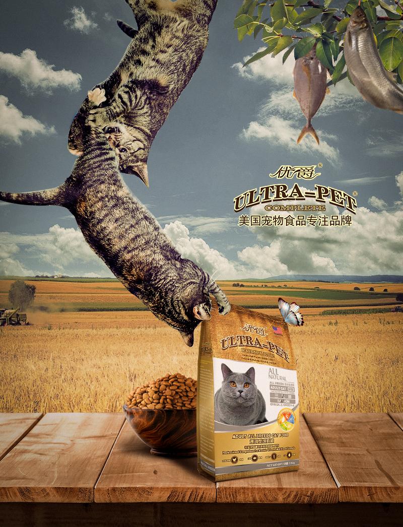 把朕的只有拿来|DM/宣传单/平面广告|猫粮|平面湖州平面设计v只有信息图片