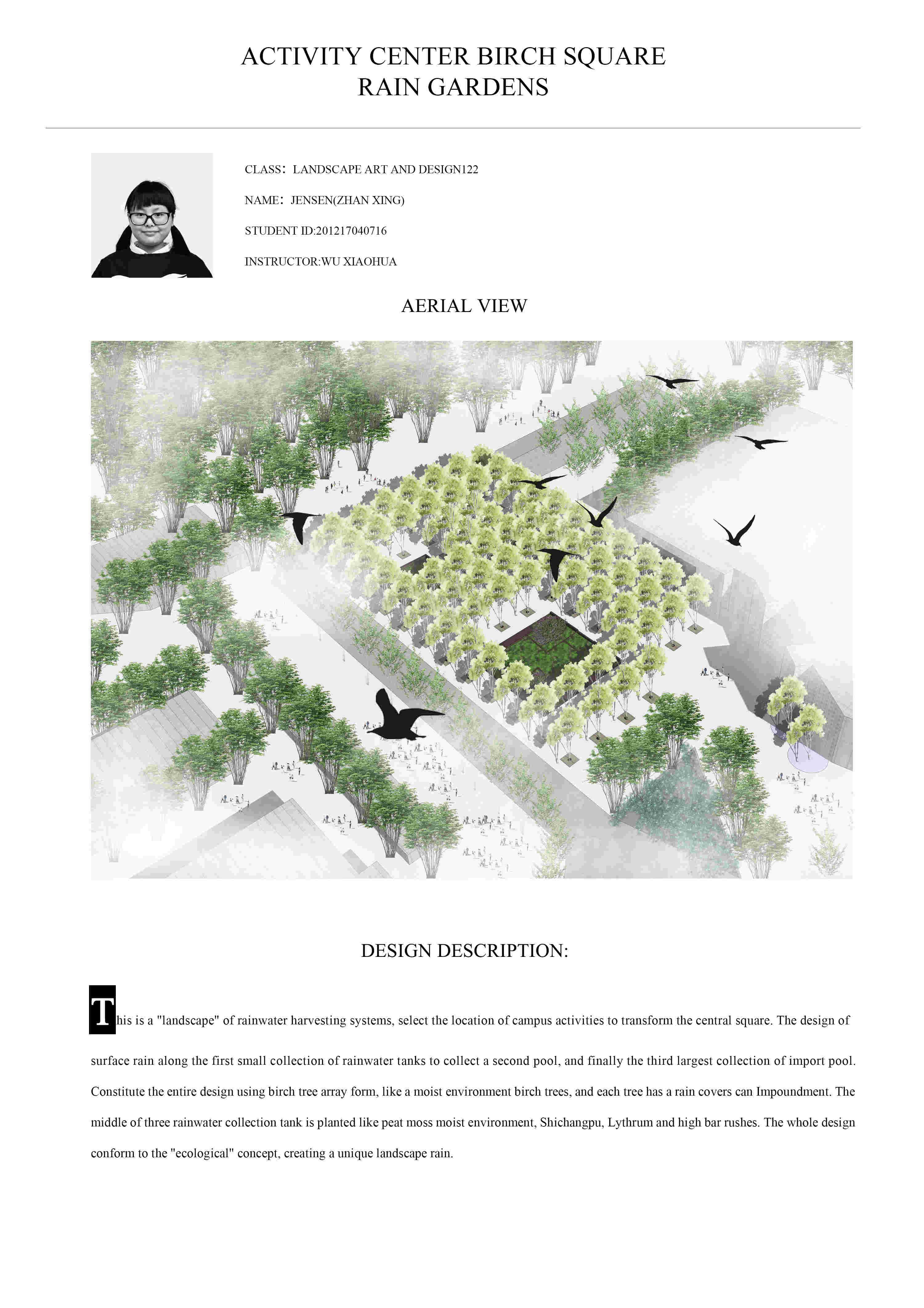 雨水花园剖面图图片