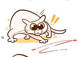 #温蛋黄# 猫咪日常