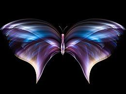 《光绘蝴蝶》