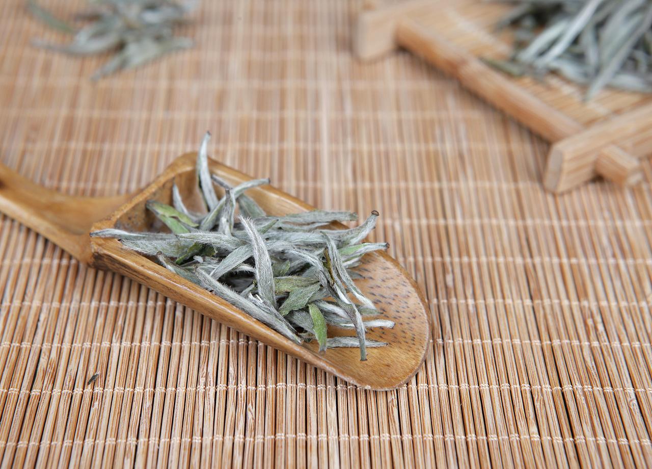 白茶工序手绘图