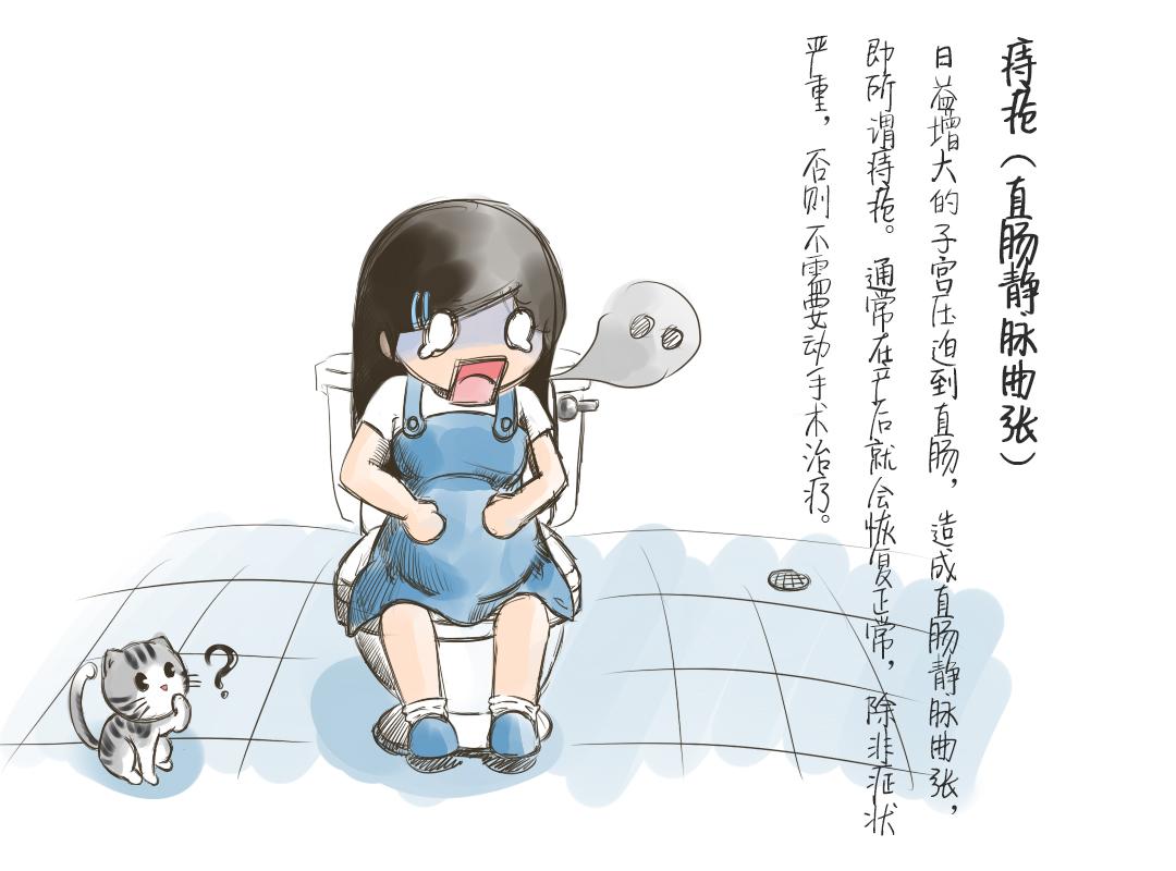 孕期小知识手绘插画
