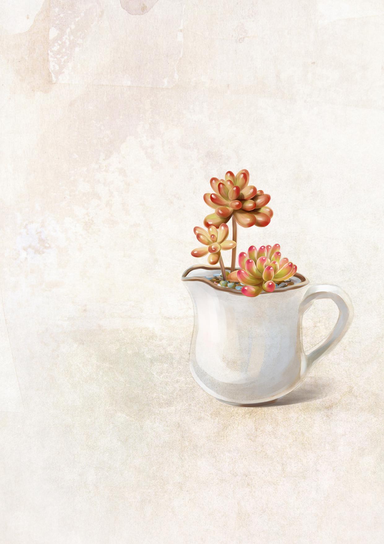 小清新 多肉植物插画