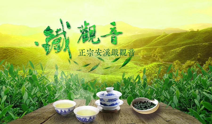 铁观音茶叶banner