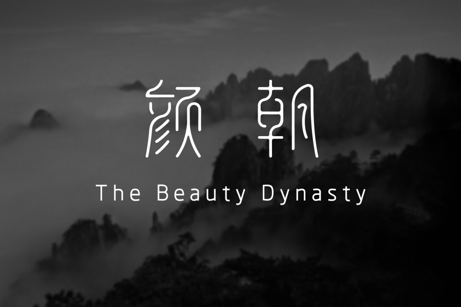 TheBeautyDynasty.颜朝.字形v字形|斜角/字体|平复式字体室内设计图片
