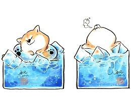【7月更新】西风的柴狗子系列 这只小狗冒凉气