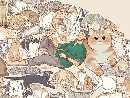 画猫第二季每天增加的猫猫视频