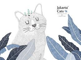 【本册设计】邻家的猫