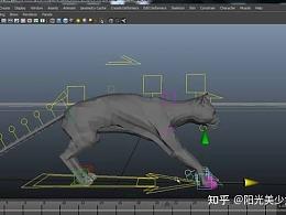 猫走路动画教程分享,喜欢的分享下